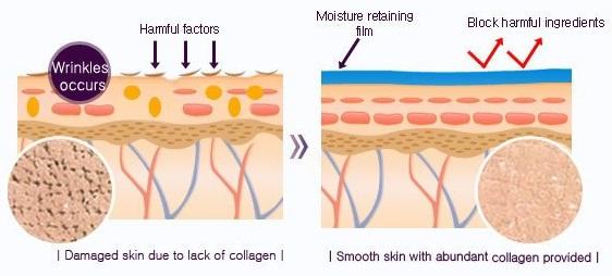 Mizon Original Skin Energy Collagen 100 Ampoule